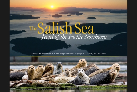 salishcover_blog