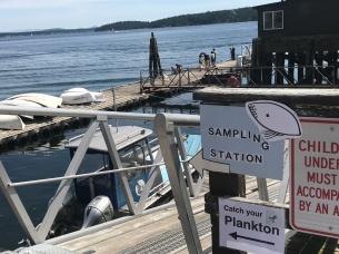 FHL Sampling Station